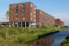 Colour 29. Primula (Présence). Architect Klunder Architekten Rotterdam. Buildings. DELFGAUW (NL)
