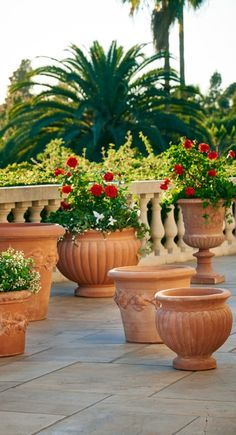Awesome Whether Placed In Pairs Or As Individual Accents, Our Scannellata Planters  Showcase The Simple Beauty Of Traditional Italian Terracotta Pottery.