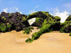 Beach, Lava, Ocean at Waialea Beach