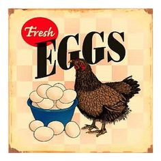 Look For Fresh Eggs Hen Chicken Distressed Retro Vintage Tin Sign Price Now Chicken Signs, Hen Chicken, Chicken Humor, Chicken Art, Fresh Chicken, Chicken Coops, Metal Chicken, Chicken Life, Funny Chicken