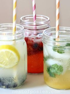Nest of Posies: FIZZ ~ great fizzy flavored waters that are healthy for you too!  Also a great tip on using mason jars on a blender (the screw part of a mason jar fits on most blenders...who knew?).