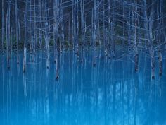 青い池:美瑛町