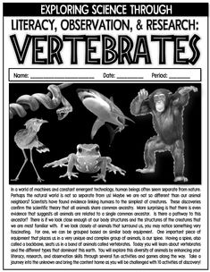 Vertebrates: Literacy, Observation, and Research Activity Game Package Activity Games, Fun Activities, Next Generation Science Standards, Vertebrates, Science Education, Natural World, Research, Diversity, Biology
