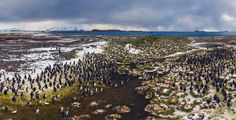 Photogallery | South Georgia Island | 360° Aerial Panoramas, 3D Virtual Tours Around the World, Photos of the Most Interesting Places on the Earth
