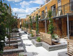 580 Courtyards Ideas In 2021 Landscape Design Landscape Architecture Modern Landscaping