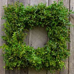 Boxwood Wreaths (made in Virginia) - great idea for Christmas gifts