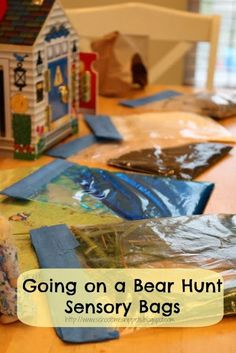"""Literature 1: """"Bear Hunt Sensory Bags""""  Bags are filled with different materials to represent the wavy grass, water, snow, etc. This activity allows children to connect with the story because they can see and feel the materials. It extends the book's atmosphere."""
