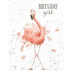 Wrendale Designs Happy Birthday Greeting Card NEW Flamingo Birthday girl Happy Birthday Wishes Cards, Happy Birthday Girls, Girl Birthday Cards, Birthday Blessings, Happy Birthday Pictures, Birthday Greeting Cards, Birthday Girl Quotes, My Birthday, Unique Birthday Cards