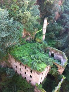 #My grandparents had a mill  at their home in Slovenia and  I wish there had been pictures taken    :(  Abandoned Flour Mill in Sorento, Italy