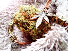 Chill mode...💚🍁🦉 Link for bracelets in bio! #weedlets#cannabis#420#weed#cannabiscommunity#marijuana#thc#ganja#weedporn#hightimes#kush#stoner#highlife#710#maryjane#highsociety#dank#dabs#cbd#cannabisculture#smoke#stoned#high#sativa#medicalmarijuana#stonernation#dope#420life Etsy Handmade, Handmade Gifts, Crazy About You, Simple Rules, Spread Love, Medical Marijuana, Etsy Jewelry, Shopping Mall, Bud
