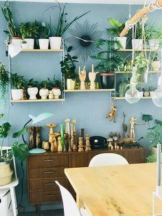 Die 205 besten Bilder von Urban Jungle: Wohnen mit Pflanzen ...
