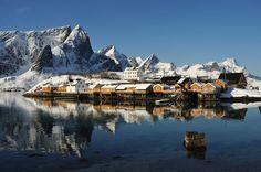 nusfjord lofoten - Google Search