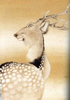 長沢蘆雪 Japanese Artwork, Japanese Painting, Japanese Prints, Chinese Prints, Chinese Art, Hiroshima, Art Japonais, Kyoto, Popular Art