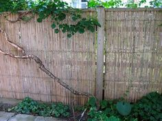 An 8-foot-long panel of 6-foot-high Bamboo Friendly Fence has high quality Tonkin bamboo woven with copper clad wire can be attached to wooden rails, with or without a wood frame; $132.95 from Bamboo Fencer.