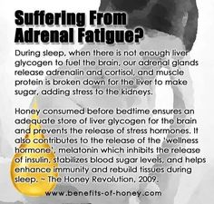 Chronic fatigue syndrome and fibromyalgia often have very similar treatments due to the fact that these two syndromes share a lot of common characteristics. If you are a chronic fatigue syndrome or fibromyalgia patient, the treatments Fatiga Adrenal, Adrenal Fatigue Symptoms, Fatigue Causes, Chronic Fatigue Syndrome Diet, Adrenal Health, Adrenal Glands, Adrenal Stress, Adrenal Fatigue Treatment, Adrenal Insufficiency Symptoms