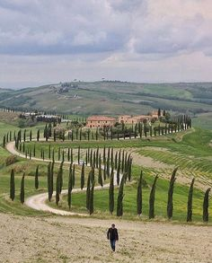 Asciano, Toscane, www. Tuscany Landscape, Villas In Italy, Places In Italy, Italian Villa, Photography Tours, Visit Italy, Italy Travel, Beautiful Places, Places To Visit