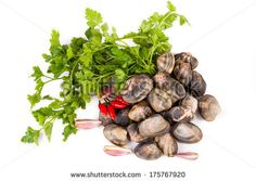 Raw clams with parsley and chili peppers on white background. by eZeePics Studio, via Shutterstock