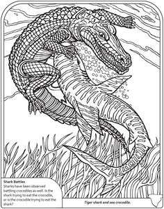 j coloring pages for older kids | karate coloring pages for kids | TaeKwonDo | Pinterest ...