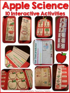 10 Apple Interactive Science activities that will create a comprehensive study of apples that engages your students! Fill your science notebook or create a 3 dimensional apple science book full of interactive hands on science lessons! Fall Preschool, Kindergarten Science, Science Classroom, Teaching Science, Science For Kids, Kindergarten Apples, Preschool Apples, Science Education, Classroom Ideas