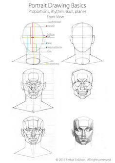 Portrait Drawing Basics