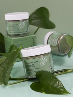 our USDA chlorophyll mask is the perfect at-home spa treatment! when applied topically, chlorophyll purifies skin and brings out our natural glow. Natural Hair Mask, Baking Soda Shampoo, How To Grow Eyebrows, Skin Tag Removal, Makes You Beautiful, Dull Skin, Younger Looking Skin, Clean Beauty, Natural Beauty