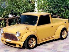 Now that's a frickin BEAST of a #WideArchedWednesday Mini Pup from our friends in the UAE.