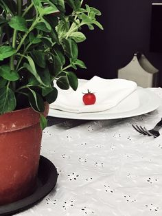 A cherry tomato tablescape from the Tomato Red Issue | The Gourmet Mag, an Italian Food Magazine