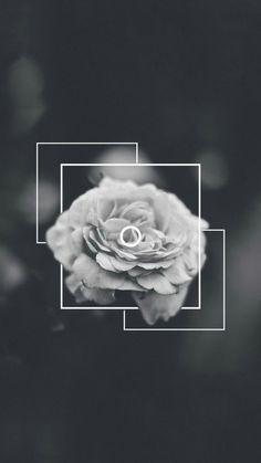 Wallpaper - Flower
