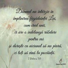 Bible Verses, Spirituality, Sweet, Bible, Candy, Spiritual, Scripture Verses, Bible Scripture Quotes, Bible Scriptures