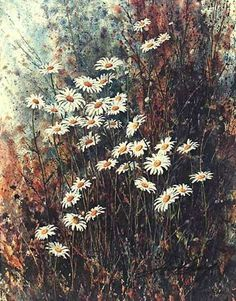 Field Daisies Jim Gray