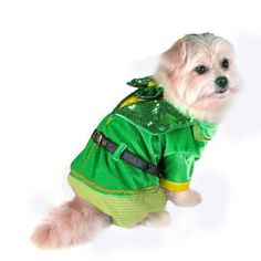 Little Leprechaun Boy Dog Costume