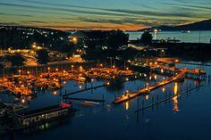 False Creek Marina, Vancouver, British Columbia, Canada by Doug Matthews