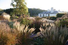 Herefordshire garden by Tom Stuart-Smith