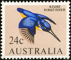 Azure Kingfisher stamps - mainly images - gallery format