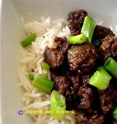 Quick & Easy Korean Beef | Domesticated Academic