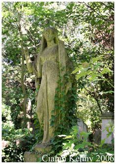 England Overgrown Statue in Abney Park. Overgrown angel in Abney Park. Abney Park Cemetery is, alongside Highgate, another of London's great Victorian cemeteries.
