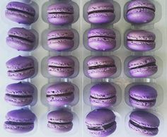 Recipe Macarons by NicoleCarey, learn to make this recipe easily in your kitchen machine and discover other Thermomix recipes in Baking - sweet. Choc Ganache, Kitchen Machine, Gel Food Coloring, Bellini, Almond Recipes, Sweet Recipes, Baking, Thumbnail Image, Biscuits