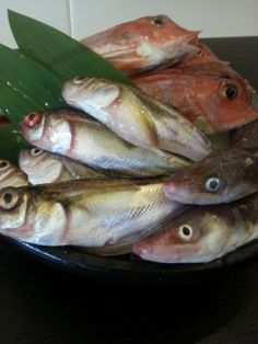 "Fresh fishes became ""Sashimi"""