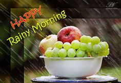 Good Morning Nature, Good Morning Cards, Morning Pages, Cute Good Morning, Good Morning Greetings, Good Morning Wishes, Good Morning Images, Rainy Morning Quotes, Happy