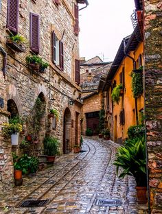 Spello - Italy by Vittorio Delli Ponti Italy is beautiful! I'm looking forward to visiting one day!