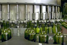 Dossier du vin : La vinification du vin rouge-Vin Social Club
