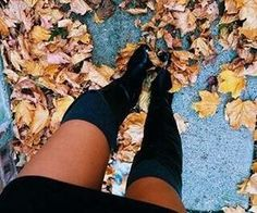 #fall #leaves #falls