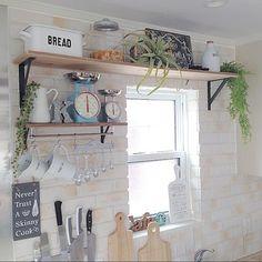 こちらもキッチンに。優しい雰囲気のキッチンに溶け込んでいて、癒される空間。伸び伸びとしたグリーンたちはとてもフェイクには見えません。