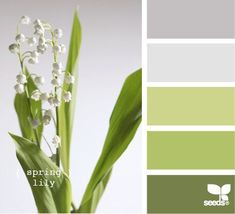 Wedding colors schemes spring design seeds ideas for 2019