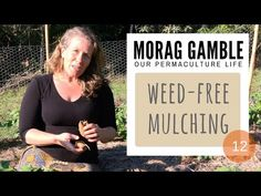 Our Permaculture Life: Do you want a weed-free garden? Film #12 Weed-Free Mulching by Morag Gamble (3 mins)