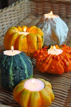 Happy Fall Hauntings