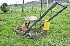 natural lawn mower