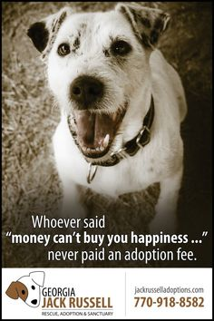Whoever said money can't buy you happiness, never paid an adoption fee.