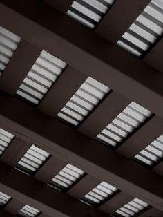 Sedum Roof Ipe