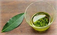 How To Make Laurel Essential Oil To Treat Joint Pain, Varicose Veins, And Headaches 6 Obvious Signs Of Gluten Intolerance That Everyone Ignores Bitter Melon Regulates Diabetes Type 2 Health Remedies, Home Remedies, Natural Remedies, Herbal Remedies, Blood Pressure Diet, Blood Pressure Remedies, Migraine, Bay Leaves, Laurel Leaves